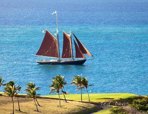 schooner roseway