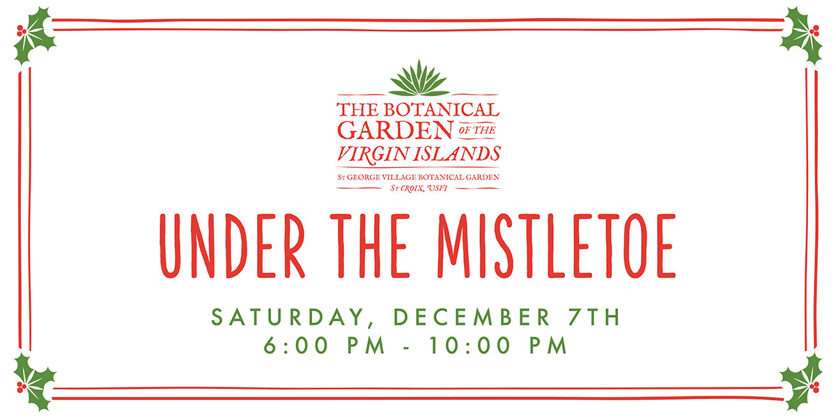 Under the Mistletoe 2019